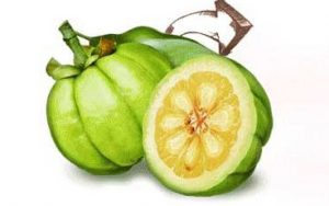 The natural fat killer of Garcinia fruit